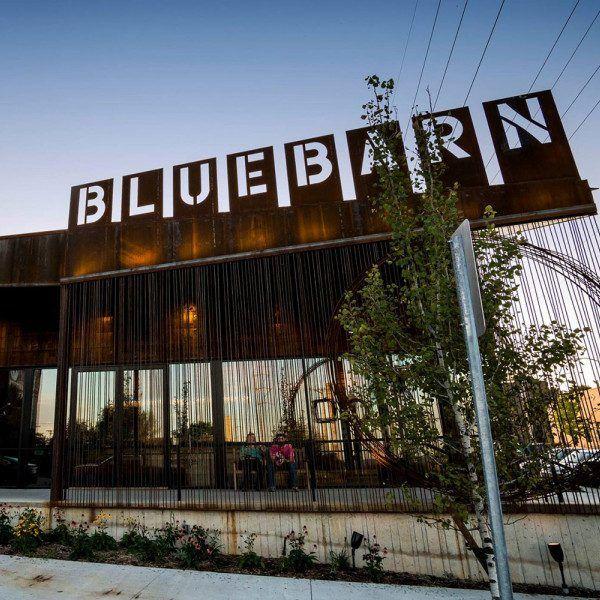 BlueBarn Theatre